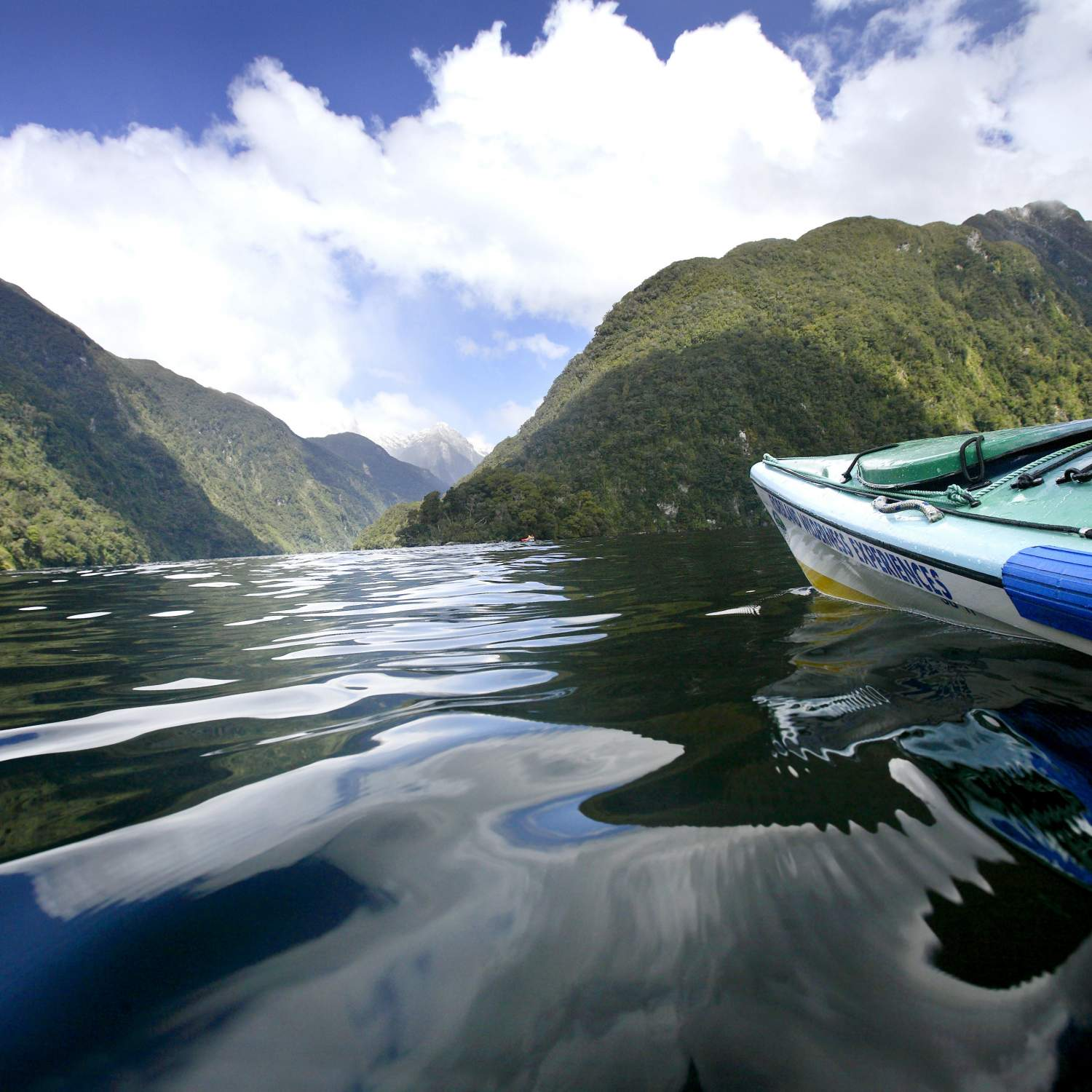 RS 7 Kayaking in Doubtful Sound